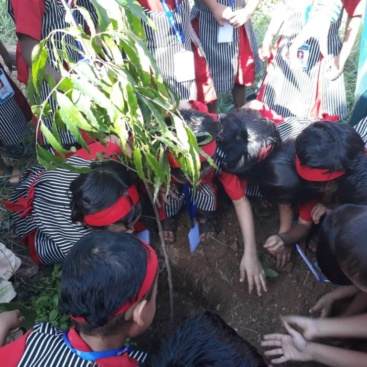 KG Section tree plantation 18-19